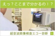 えっ?ここまで分かるの!?超音波画像検査エコー診断