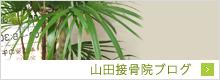 山田接骨院ブログ